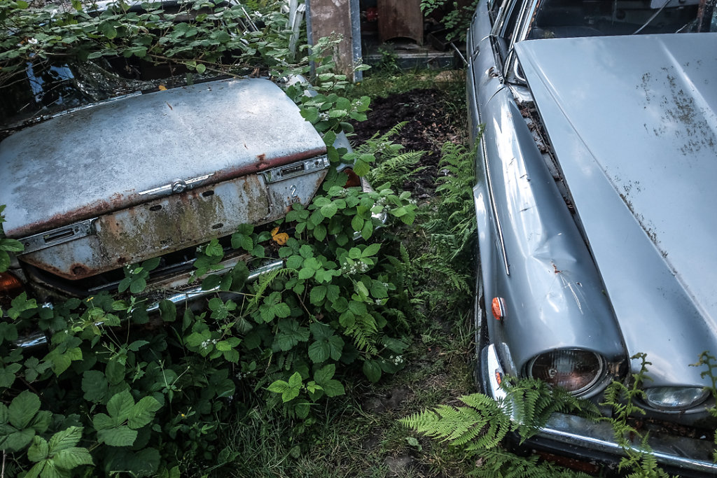 The Jaguar Graveyard